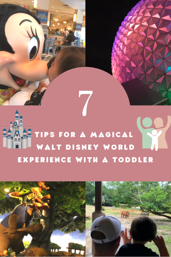 7 Tips for a Magical Disney World Experience with aToddler